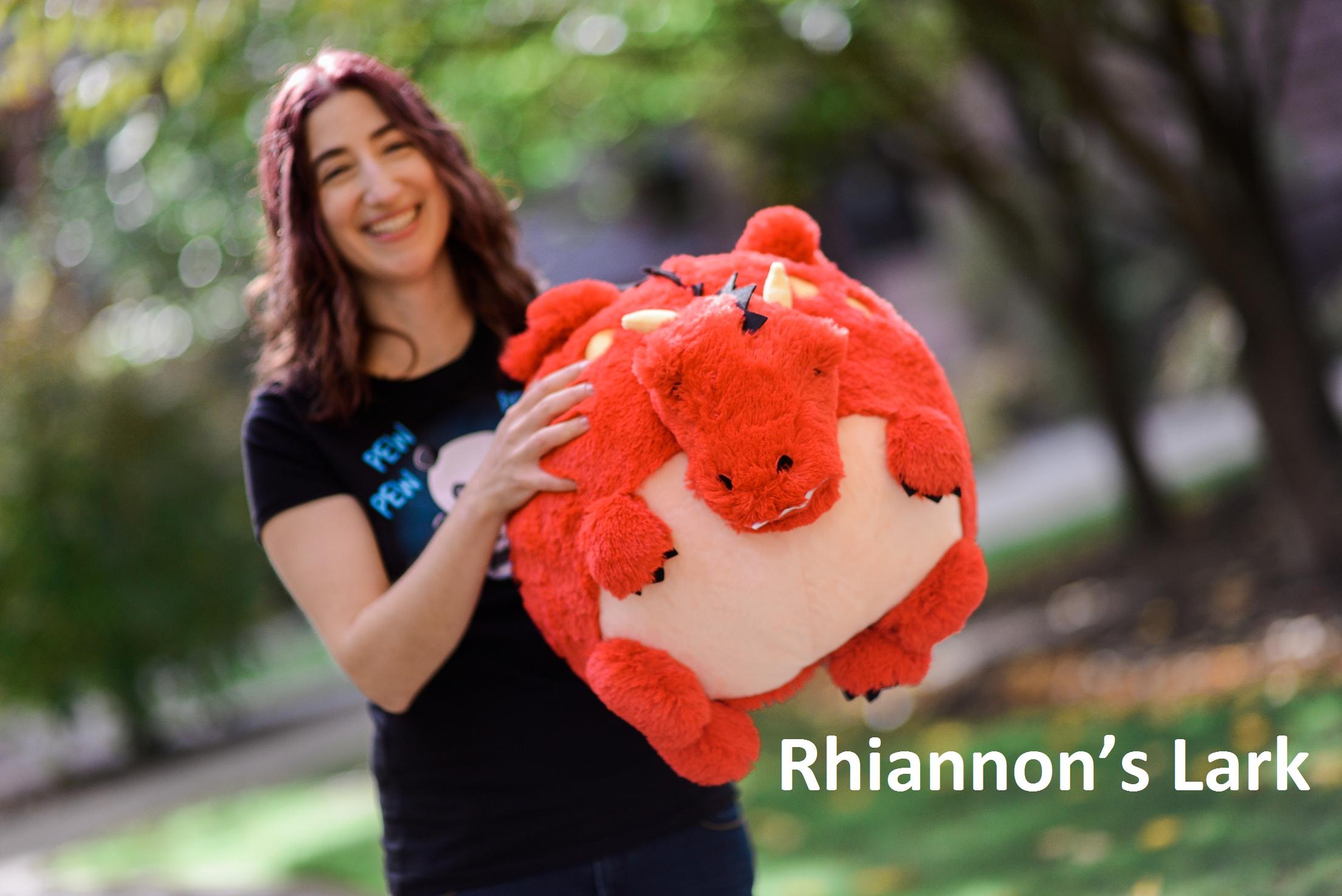Rhiannon's Lark